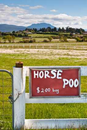 Horse Poo Sign